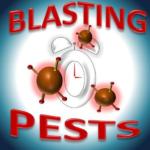 blasting pests