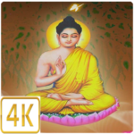 buddhism live wallpapers 4k sensor multi touch