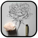 flower drawings and sketches ideas