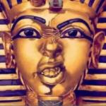 the curse of pharaohs